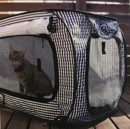 猫壱 ポータブルケージ 避難