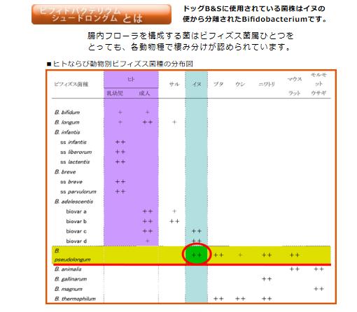トーラス ドッグB&S ビフィズス菌種の分布図
