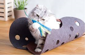 OPPO Fab Cat Tunnnel 半分開けて