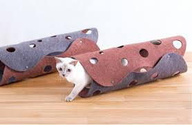 OPPO Fab CatTunnnel 入ってるところ