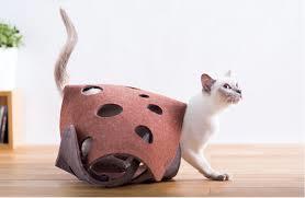 OPPO Fab Cat Tunnnel 横から出てきてる