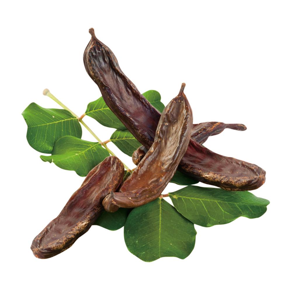 マルカン イナゴ豆 葉っぱの上