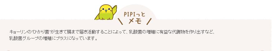 ひかり菌②